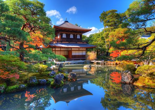 Matcha Tee Ursprung Japan